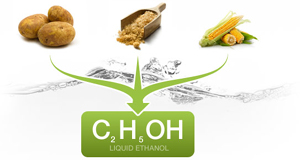 What Is Ethanol >> What Is Ethanol Fuel